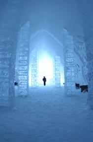 Winter Lands Sanctuary