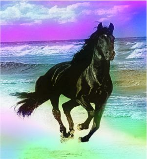 Spirit Horse on the beach